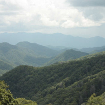 Tour The Great Smoky Mountains