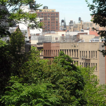 New York City Guided Sightseeing Tour Central Park