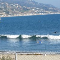 Los Angeles Malibu Guided Sightseeing Tour