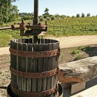 Wine Tasting Tours - Paso Robles California