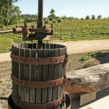Wine Tasting Tours - Paso Robles California