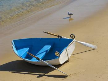 Ferry To Australia's Manly: Day Trip