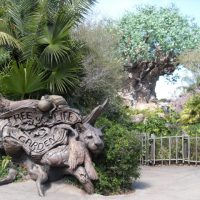 Animal Kingdom Kids Trip