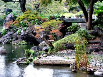 Tokyo's Gardens, History, And Temples