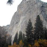 Yosemite Valley Walking Tour