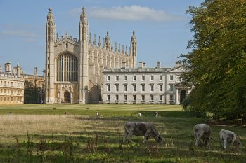 Historic Cambridge Universities