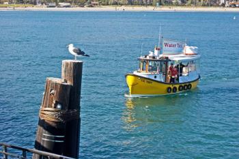 picture of santa barbara harbor boats